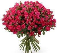 Роза кустовая 35шт